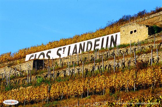 Grand Cru Clos Saint Landelin